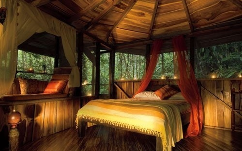 Tree House Bedroom | Bedroom Interiors Photos